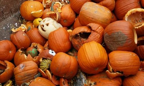 Plastic-Free Halloween Ideas