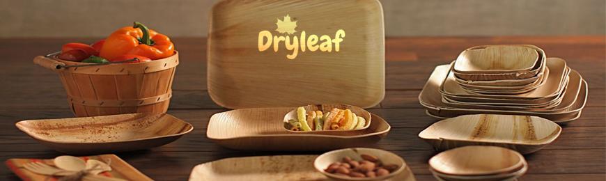 Plastic-Free Spotlight: Dryleaf